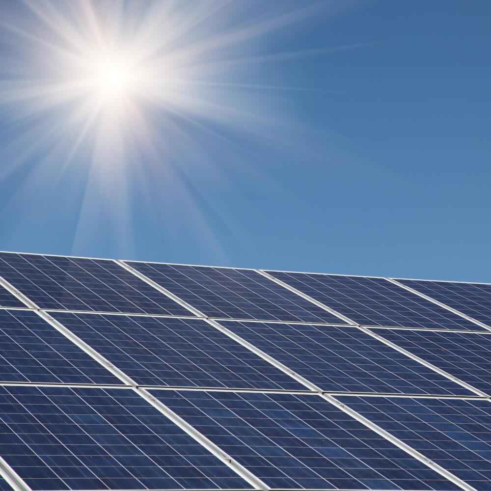 freedom electrical sunny solar panel